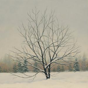 Winter's Spell