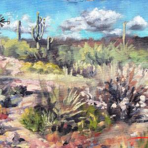 Plein Scottsdale Wash