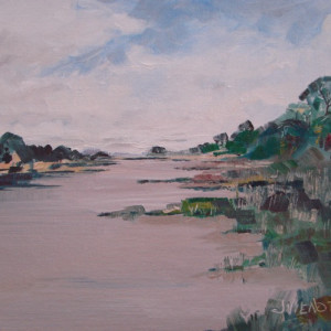 2014 0323 apalach afternoon behind the island nwdueq