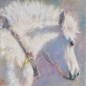 White foal oil study web p1ors1