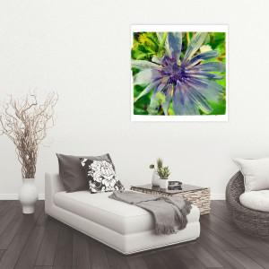 Blue Chicory Flower