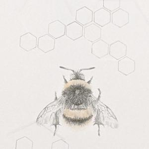 Buff tailed BumbleBee 3.25e by Louisa Crispin
