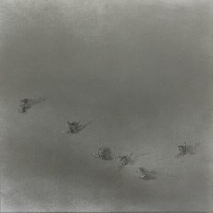Flight Path xxxiv by Louisa Crispin