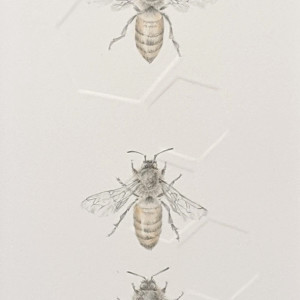 Honey Bee 3.12e by Louisa Crispin