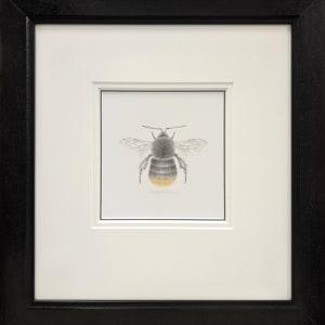 BumbleBee x by Louisa Crispin
