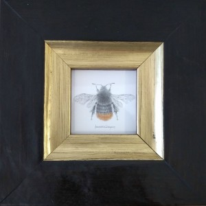 DailyBee by Louisa Crispin