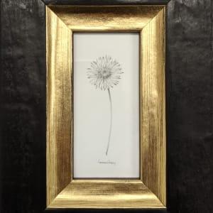 Daisy 006 by Louisa Crispin