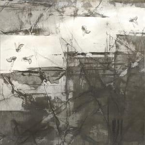 FlightPath lxi (nf) by Louisa Crispin