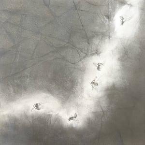 FlightPath lv by Louisa Crispin