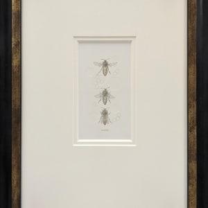 Honey Bee 3.38e by Louisa Crispin