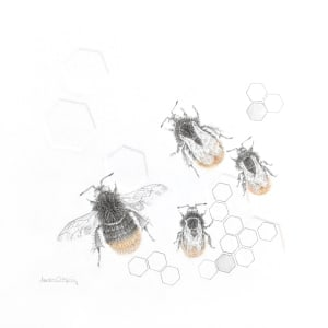 Red tailed BumbleBee 3.29se by Louisa Crispin