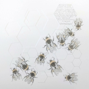 Study of a  BumbleBee 022 by Louisa Crispin