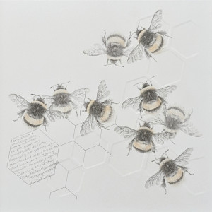 Study of a  BumbleBee 024 by Louisa Crispin