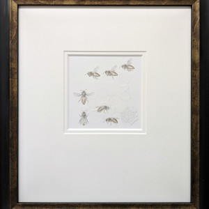 Study of a honey bee 004 framed hr 1 kjbl0l