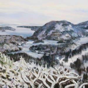Winter View Mount Parke