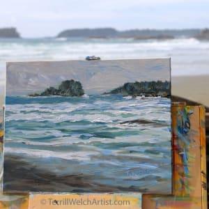 Chesterman Beach BC by Terrill Welch