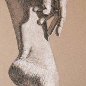 Long Limbed by Kathy Ferguson