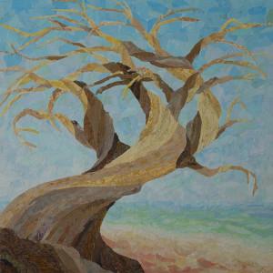 Twisted Cypress by Kathy Ferguson