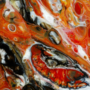 Fossil by Steve Immerman