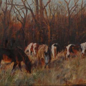 Winter pastureadj xlvjdu