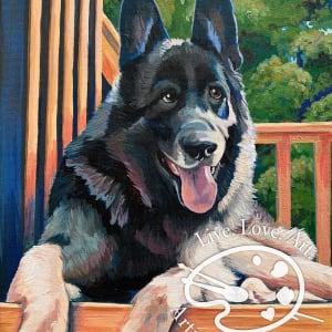 Bethem Pet Portrait