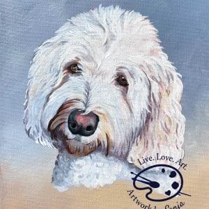 Parker Pet Portrait on Canvas by Sonja Petersen