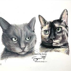 Smokey and Calico Cat Portrait