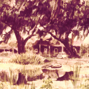 Along Bayou Teche