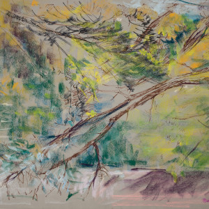 Backyard Study - Branches by Miriam McClung