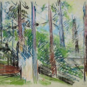 Backyard Study by Miriam McClung