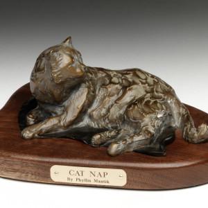 Cat Nap by Phyllis Mantik deQuevedo