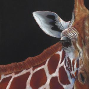 Giraffe finished qjntrd
