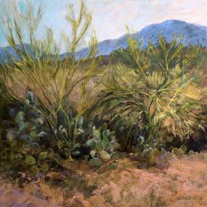 Sonoran morn72 8x8 oxoxoh