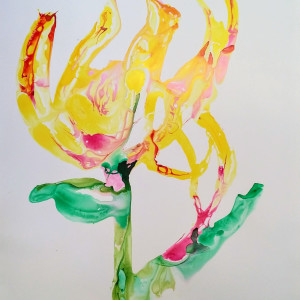 Big Tulip Lily