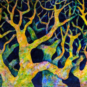20181210 neptune s trees2 mcnngp