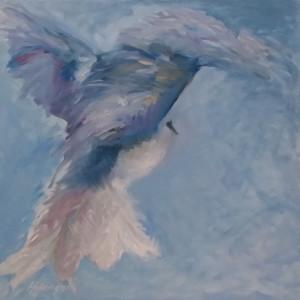 Kookaburra Departure
