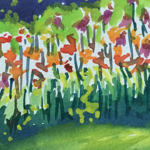 Laughing lilies  carillon park   dayton oh jlbp85