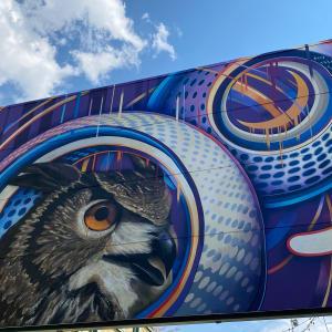 Owl Mural by AJ Davis