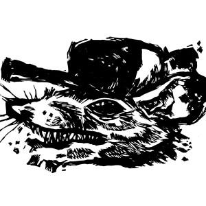 Opossum lrg hexye4