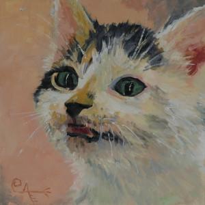 Callie's Kitten II: A Rescue