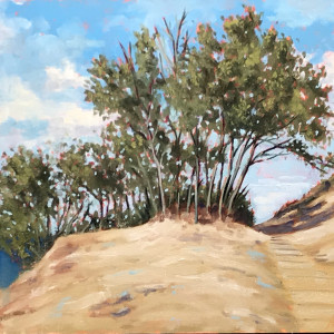 Sleeping Bear Sand Dune National Lakeshore
