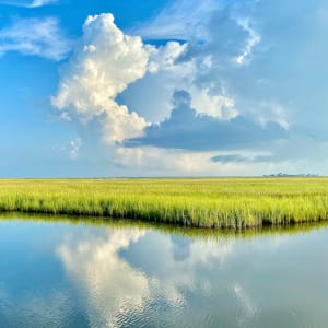Clouds and Sea Grass by Gilchrist Jackson MD, FACS